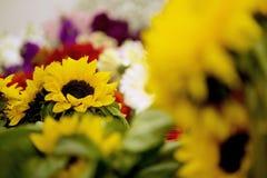 Bouquets de tournesol photos libres de droits