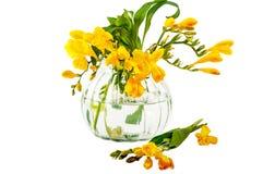 Bouquets des fleurs Juste plu en fonction Image libre de droits