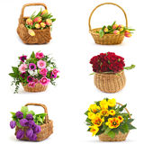 Bouquets of flowers Royalty Free Stock Photography