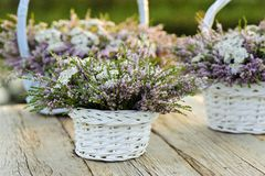 Bouquets of flowers in baskets Royalty Free Stock Photography