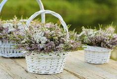 Bouquets of flowers in baskets Royalty Free Stock Images