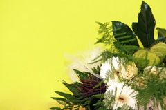 Bouquets of flowers in front of yellow background Royalty Free Stock Photo