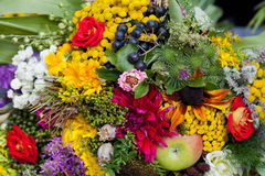 Bouquets of flowers and herbs Stock Images