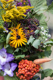 Bouquets of flowers and herbs Stock Image