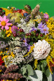 Bouquets of flowers and herbs Stock Photography