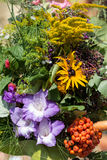 Bouquets of flowers and herbs Royalty Free Stock Image