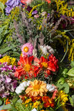 Bouquets of flowers and herbs Stock Photos