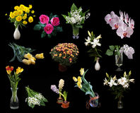 Bouquets of flowers isolated on black Royalty Free Stock Images