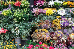 Bouquets of flowers from a shop Royalty Free Stock Photography