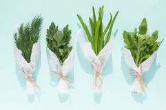 Bouquets of fresh greens for salad packed in white paper on a light blue background isolated. Close-up Royalty Free Stock Image