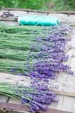 Bouquets of fresh lavender on a wooden table, prepared for drying. Rustic style. stock image
