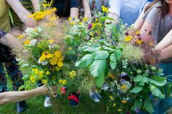 Bouquets of healing herbs and flowers in the hands of women. royalty free stock images