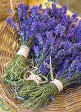Bouquets of lavender flowers for sale at farmers market. Natural, organic aromatherapy herbs. royalty free stock photo
