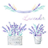 Bouquets with Lavender and herbs Royalty Free Stock Photography