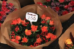 Roses at a flower market Royalty Free Stock Photo