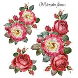 Bouquet of roses. Flowers set of watercolor red roses. Bouquets of roses. Flowers set of watercolor red roses. Illustration of flowers Royalty Free Stock Image