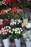 Bouquets of roses on the market Stock Image