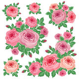 Bouquets of roses Stock Photo