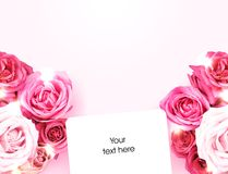 Bouquets of roses and white card Stock Images