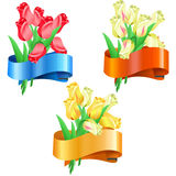 Bouquets of tulips with festive ribbon Stock Photo