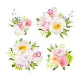 Bouquets of wild rose, orchid, peony, green hydrangea, pink flowers and blue berries Stock Photo
