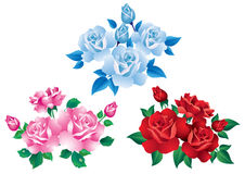 Bouquets With Red, Pink And Blue Roses. Stock Image
