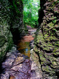 Bourbonnais Geologic Area Nature Preserve. Sinuous narrow gorge in the Bourbonnais Geologic Area Nature Preserve of Perry Farm Park in Bourbonnais, Illinois Stock Photography