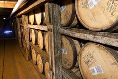 Bourbontrummor som åldras i buffeln Trace Distillery. Arkivfoto