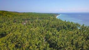 Bourdon aérien dessus sur l'île tropicale de paradis de l'Asie avec la jungle de littoral de végétation de palmiers avec un beau  Image libre de droits
