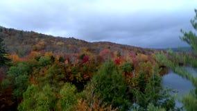 Bourdon aérien - hausse devant l'arbre vert exposant des arbres de couleur d'automne au Vermont banque de vidéos
