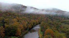 Bourdon aérien - -rivière de mouche entourée par l'arbre de couleurs dans l'automne au Vermont banque de vidéos