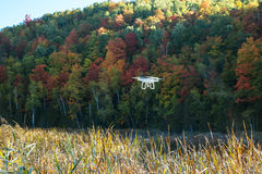 Bourdon aérien volant au-dessus de la forêt en automne Image libre de droits