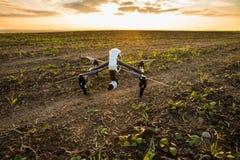 bourdon avec le vol d'appareil photo numérique en ciel au-dessus de champ sur le coucher du soleil Photo stock