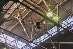 Bourdon avec le vol d'appareil-photo sur l'usine Photo stock