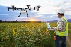 Bourdon d'agriculture de gestion par ordinateur de wifi d'utilisation d'agriculteur de technicien sur le gisement de tournesol, c photo libre de droits