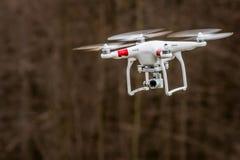 Bourdon effectuant la surveillance visuelle tout en volant Image libre de droits