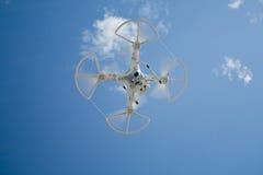 Bourdon en vol au-dessus du ciel bleu Photographie stock