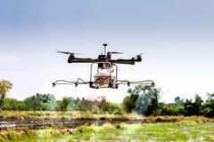 Bourdon, UAV Photos stock