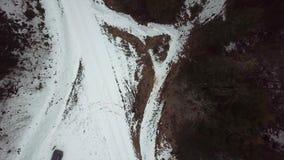 Bourdon volant au-dessus du champ cultivé au printemps dans la campagne banque de vidéos