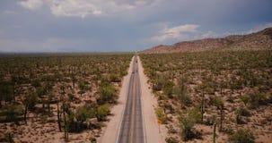 Bourdon volant en avant au-dessus de la belle route de désert avec des voitures dans le grand domaine atmosphérique de cactus e banque de vidéos