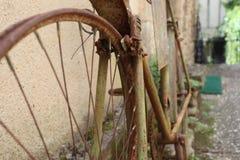 Bourdonnement sur le vieux et rouillé vélo de route photographie stock