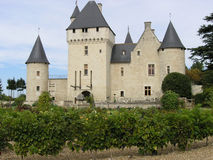 Bourgeois castle Royalty Free Stock Image