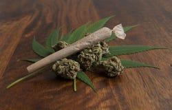 Bourgeon floraux et feuilles sativa de cannabis, avec un joint roulé de mauvaise herbe Photos stock