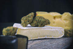 Bourgeon sec de cannabis et x28 ; Strain& x29 de fromage ; - edibles médicaux c de marijuana Image stock