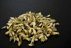 Bourgeonne le thé blanc sur une table noire Photographie stock libre de droits
