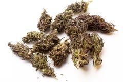 Bourgeons de marijuana d'isolement sur un fond blanc THC et valeur et influence de CBD pour la santé images libres de droits