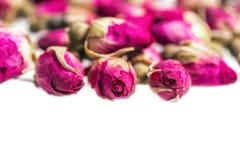 Bourgeons de rose de rose d'isolement sur le blanc Photo stock
