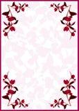 Bourgeons de rouge de pivoine Images stock