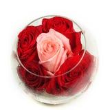Bourgeons des roses dans un vase en verre rond sur un blanc Image libre de droits