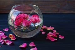Bourgeons des roses rouges dans l'eau dans un vase en verre et des pétales sur une table en bois noire Photo libre de droits